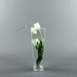 Conic L - Tulipe blanc