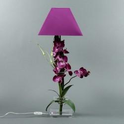 Flat M - Orchidée fushia (76348)