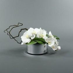 Round silver - Orchidée blanc (60422)