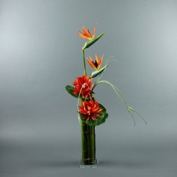 Bambou XL - Oiseau Paradis, Lotus orange