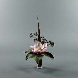 Conic S - Magnolia fushia (78120)