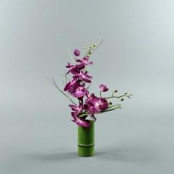 Bambou M - Orchidée double fushia (80130)