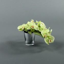 Pot silver - Orchidée vert (76423)