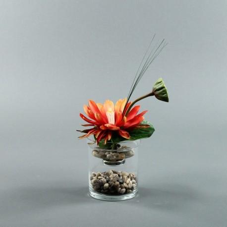 Exotic Aqua S - Lotus orange, pod