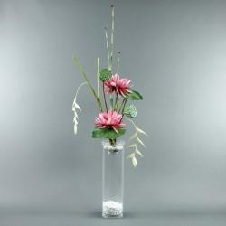 Exotic Aqua XL - Pendula blanc, Lotus fushia, pod