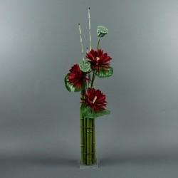 Bambou XL - Lotus rouge, pod