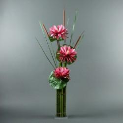 Bambou XL - Lotus fushia, roseau