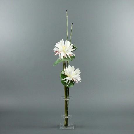 Flat M - Lotus blanc, pod
