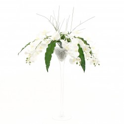 Martini L - Orchidée blanche