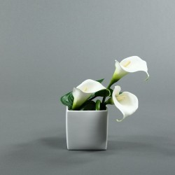 Cube M blanc - Arum blanc