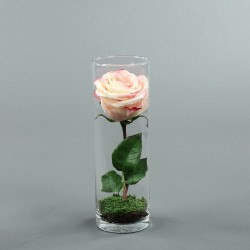 Cylindric haut - Rose rose