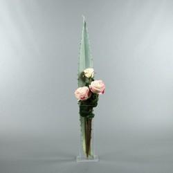 Para M - Aloe, Rose rose