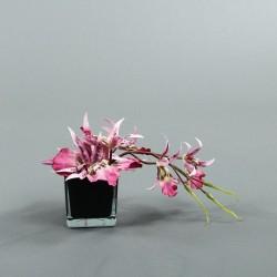 Cube S black - Orchidée spider lavande