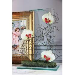 Para Glass - Orchidée vert
