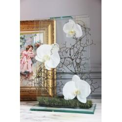 Para Glass - Orchidée blanc