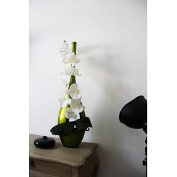 Bois laqué - ST TROPEZ GM vert - Orchidée blanc