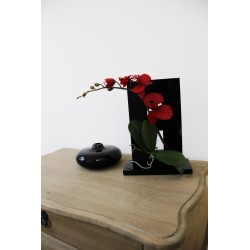 Compo Cristal MM Black - Orchidée rouge