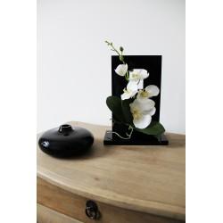 Compo Cristal MM Black - Orchidée blanc