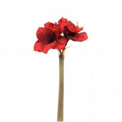 Amaryllis 2 têtes 70cm - Rouge Noël