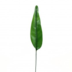 Feuille d'Oiseau du Paradis 127cm - Vert