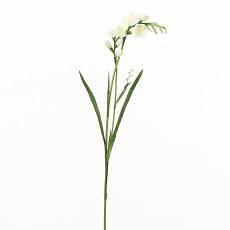 Freesia (double) 71cm - Blanc