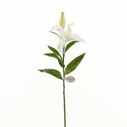 Lys Casablanca 71cm - Blanc