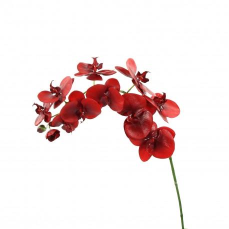 Orchidée Phalaenopsis 99cm - Rouge