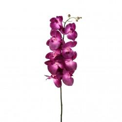 Orchidée Phalaenopsis 127cm - Fushia