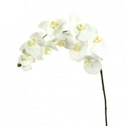Orchidée Phalaenopsis 99cm - Blanc