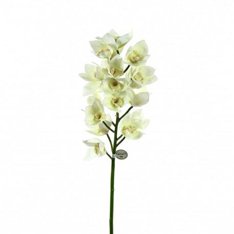 Orchidée Cymbidium ouverte 105cm - Blanc