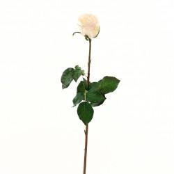 Rose Duchesse bouton 74cm - Pourpre clair
