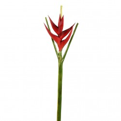 Torche Heliconia 113cm - Rouge